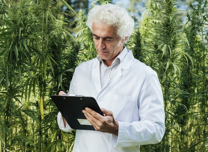 A man in a white lab coat making notes on a clipboard in the middle of a hemp grow farm.